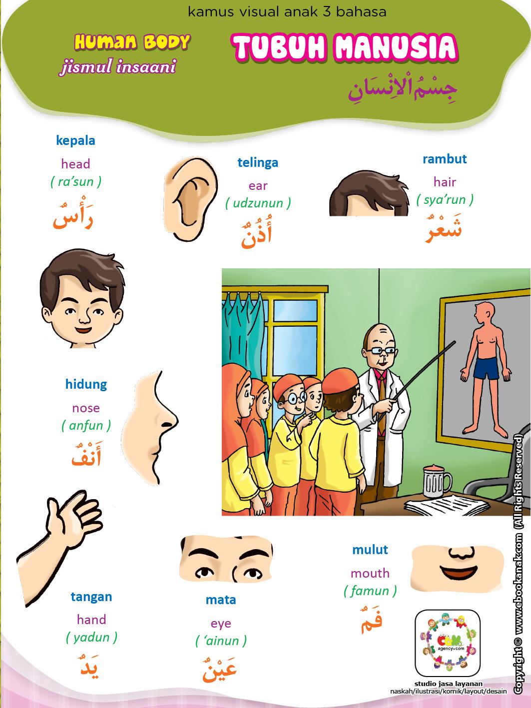 Kamus Visual 3 Bahasa 1