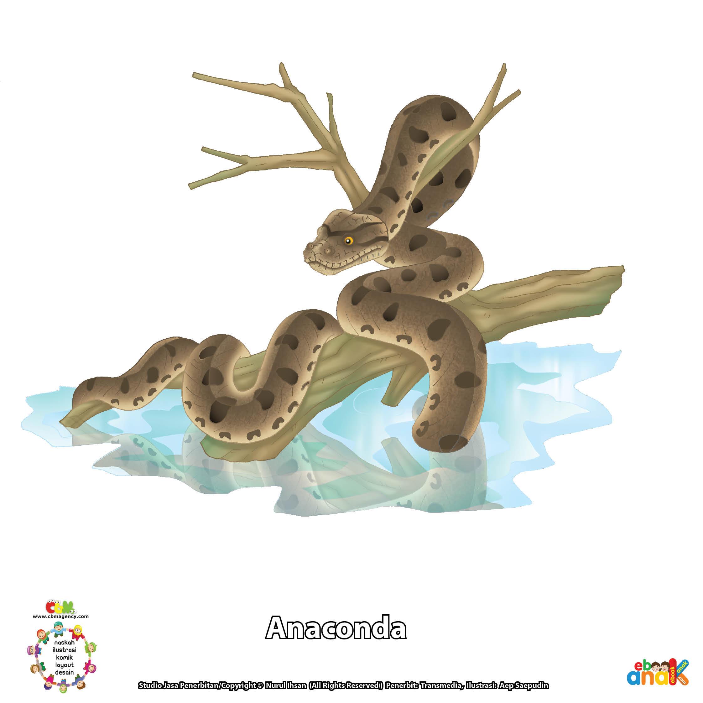 ilustrasi ular anaconda