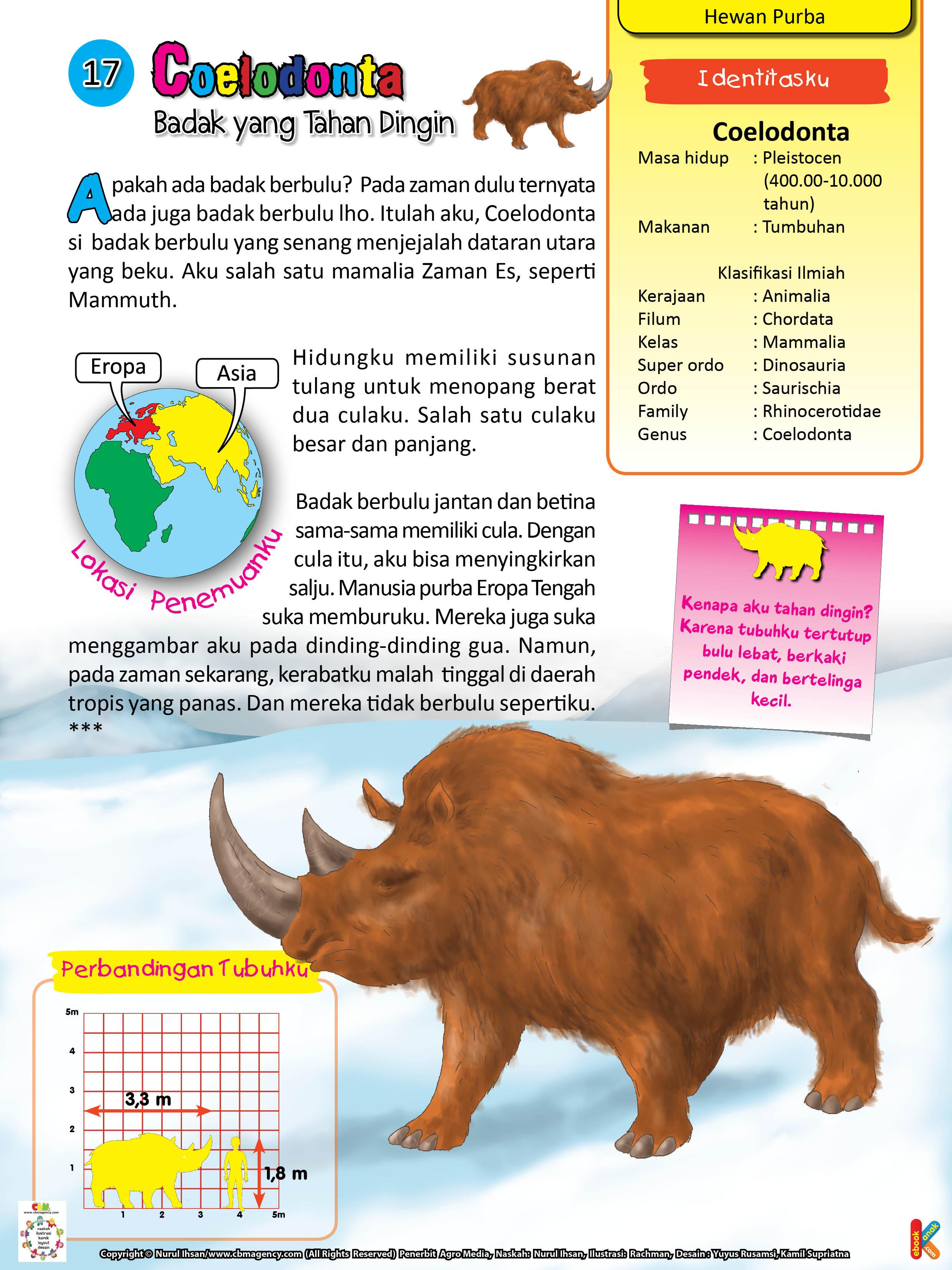 Coelodonta badak berbulu