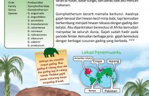 Gomphotherium adalah gajah purba mirip beruang.