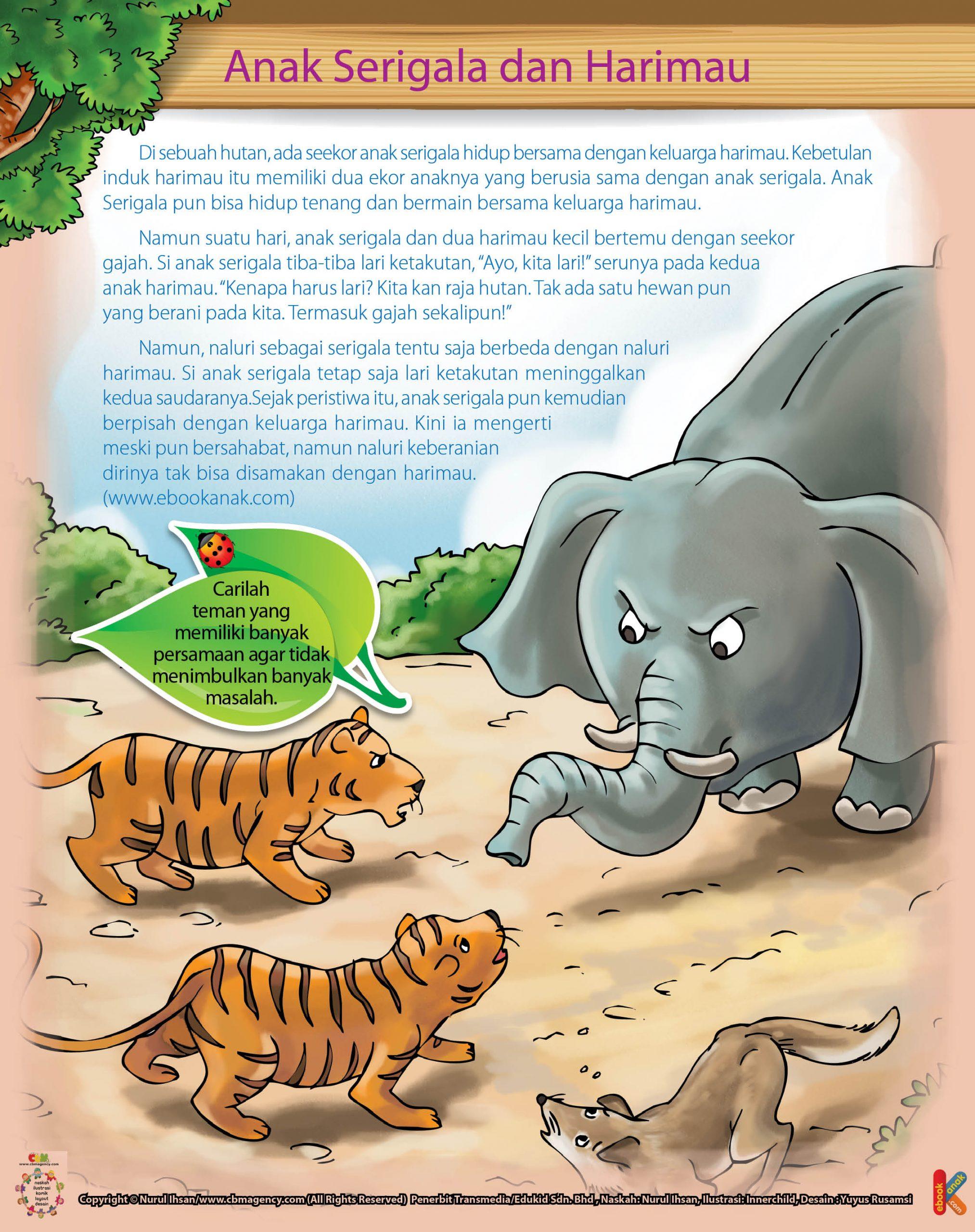 Namun suatu hari, anak serigala dan dua harimau kecil bertemu dengan seekor gajah.