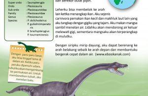 Ketika paru-paru Plesiosaurus dipenuhi udara, tubuhnya akan mengambang ke permukaan air.