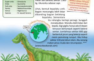 Nigersaurus hidup sekitar 110 juta tahun silam.