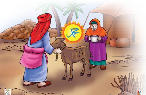 Saat diperah Rasul Saw., kambing itu mengeluarkan air susu yang berlimpah.