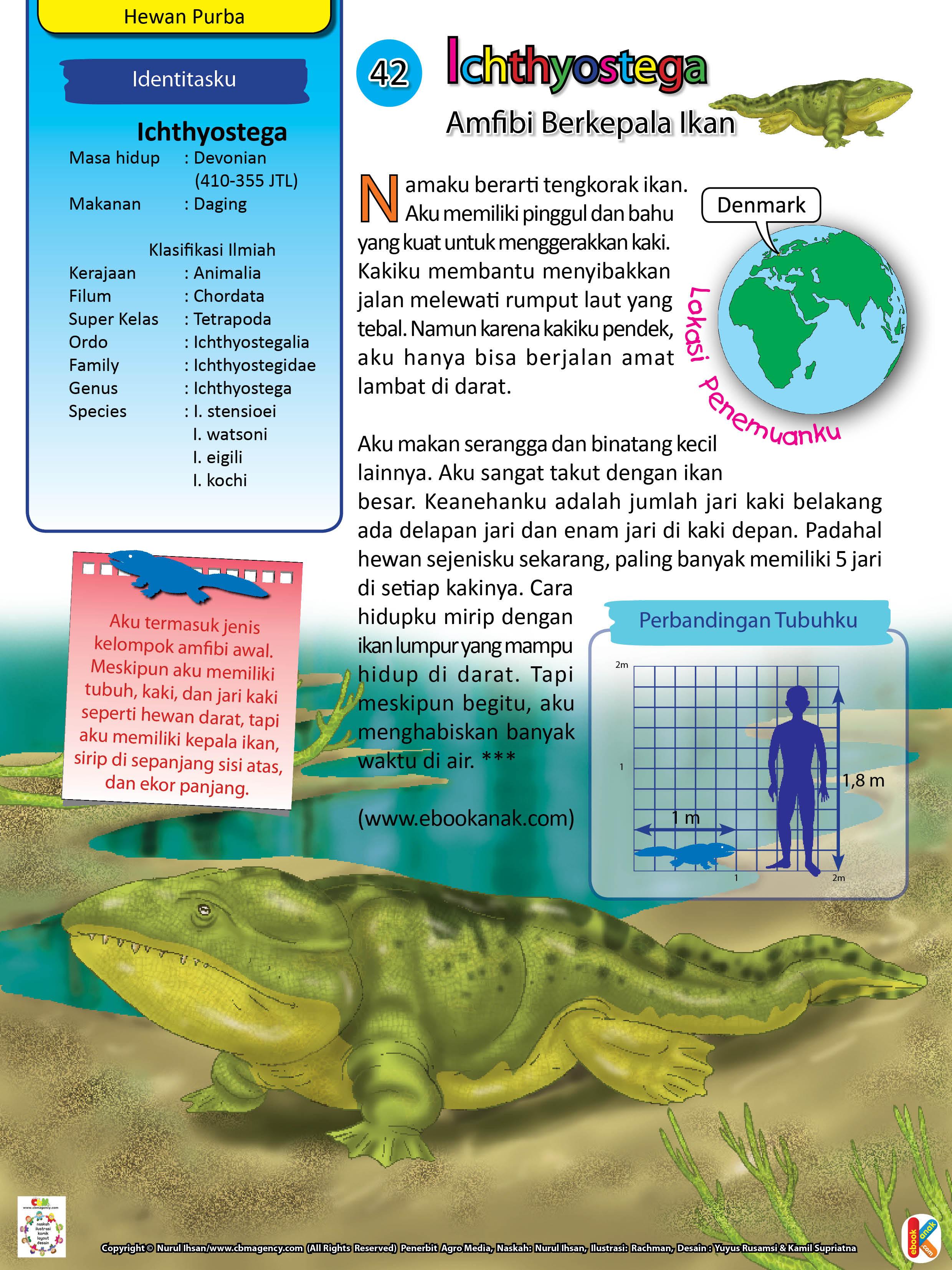 Ichthyostega memiliki pinggul dan bahu yang kuat untuk menggerakkan kaki.