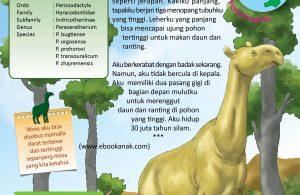 indricotherium tidak bercula di kepala.