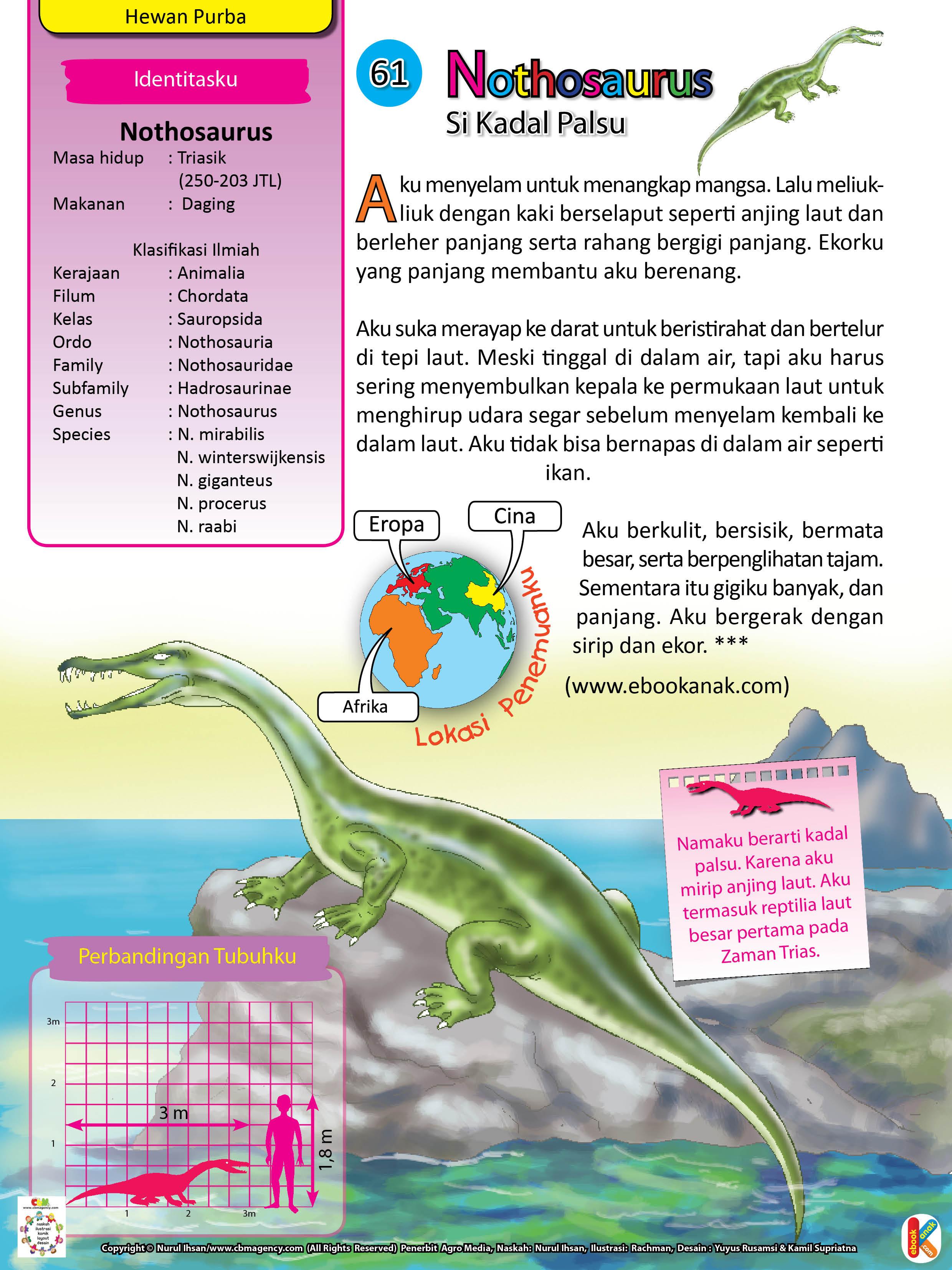 Ekor Nothosaurus yang panjang membantunya berenang.