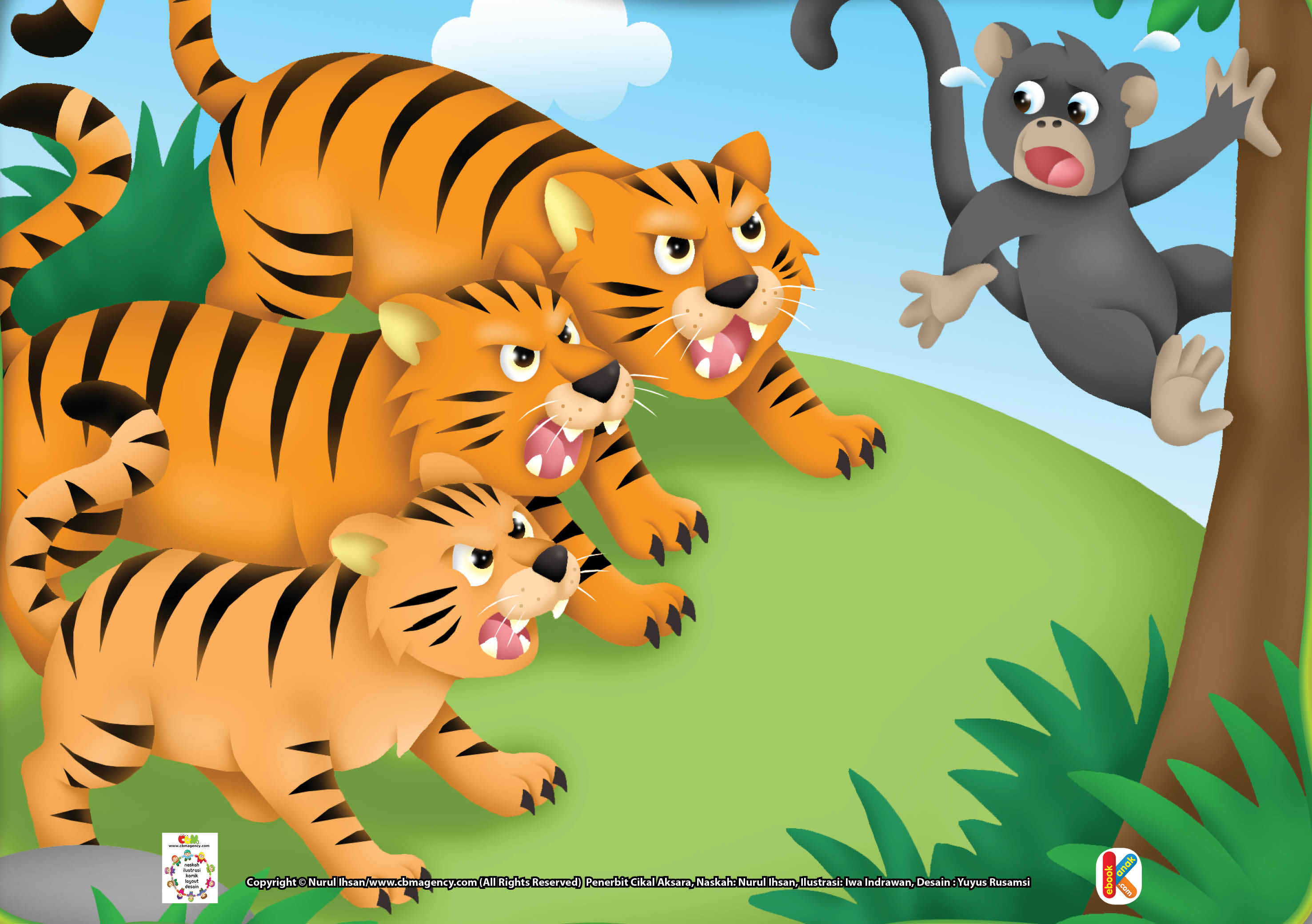 Download Gambar Gratis Jpg 12 Tatapan Harimau Yang Bisa Menjatuhkan