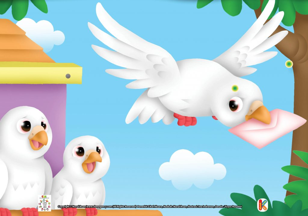 Download Gambar Gratis.jpg 27 Merpati, Burung Pengantar Surat