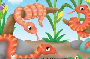 Selain itu, motif kulit ular jagung tampak seperti biji-biji jagung.