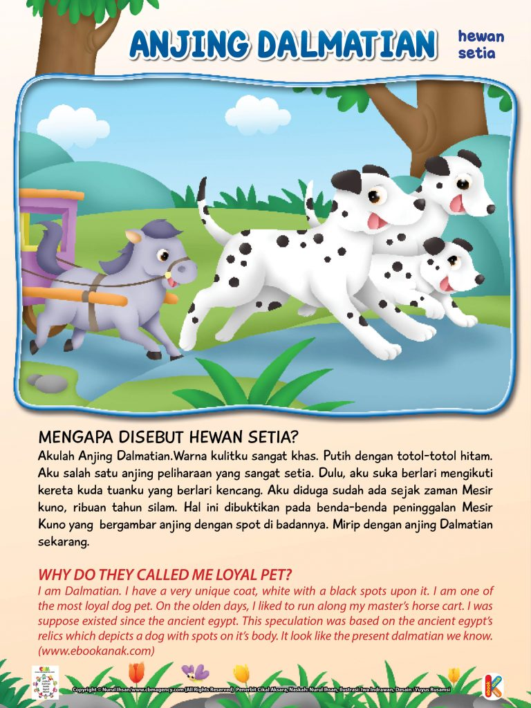 Wild & Pet Animals.jpg 29 anjing dalmatian