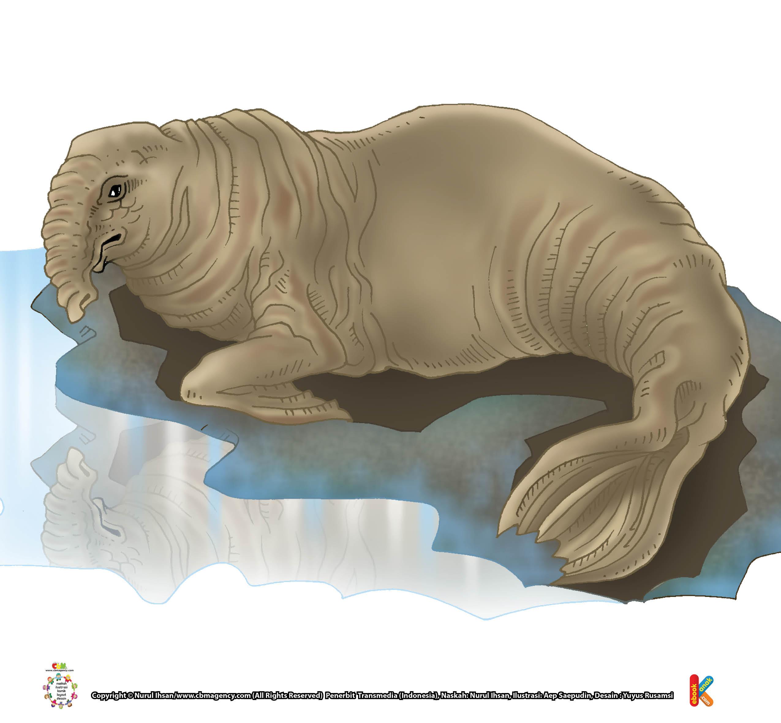 28+ Animasi anjing laut terbaru