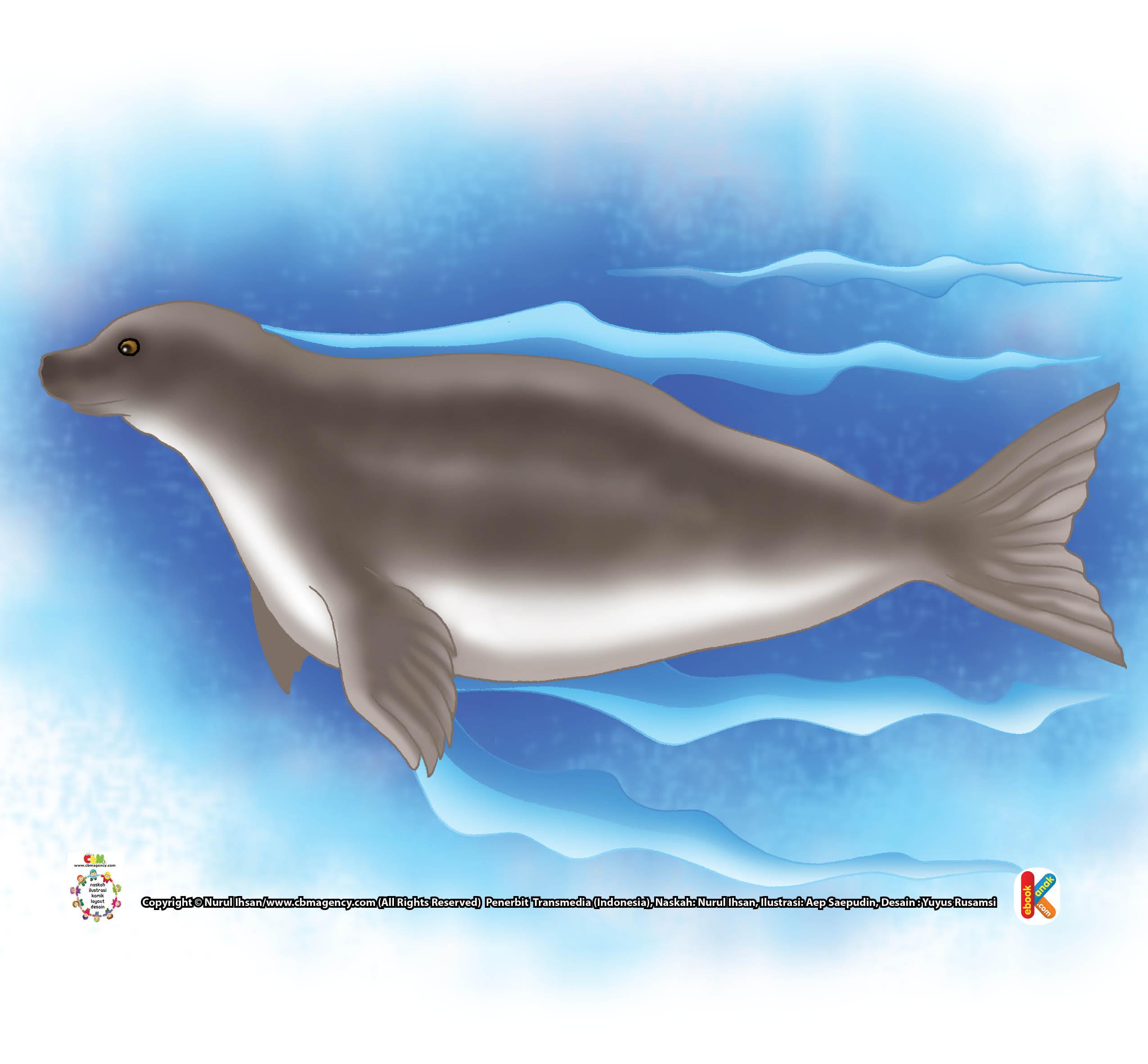 Nerpa Anjing Laut Yang Hidup Di Air Tawar