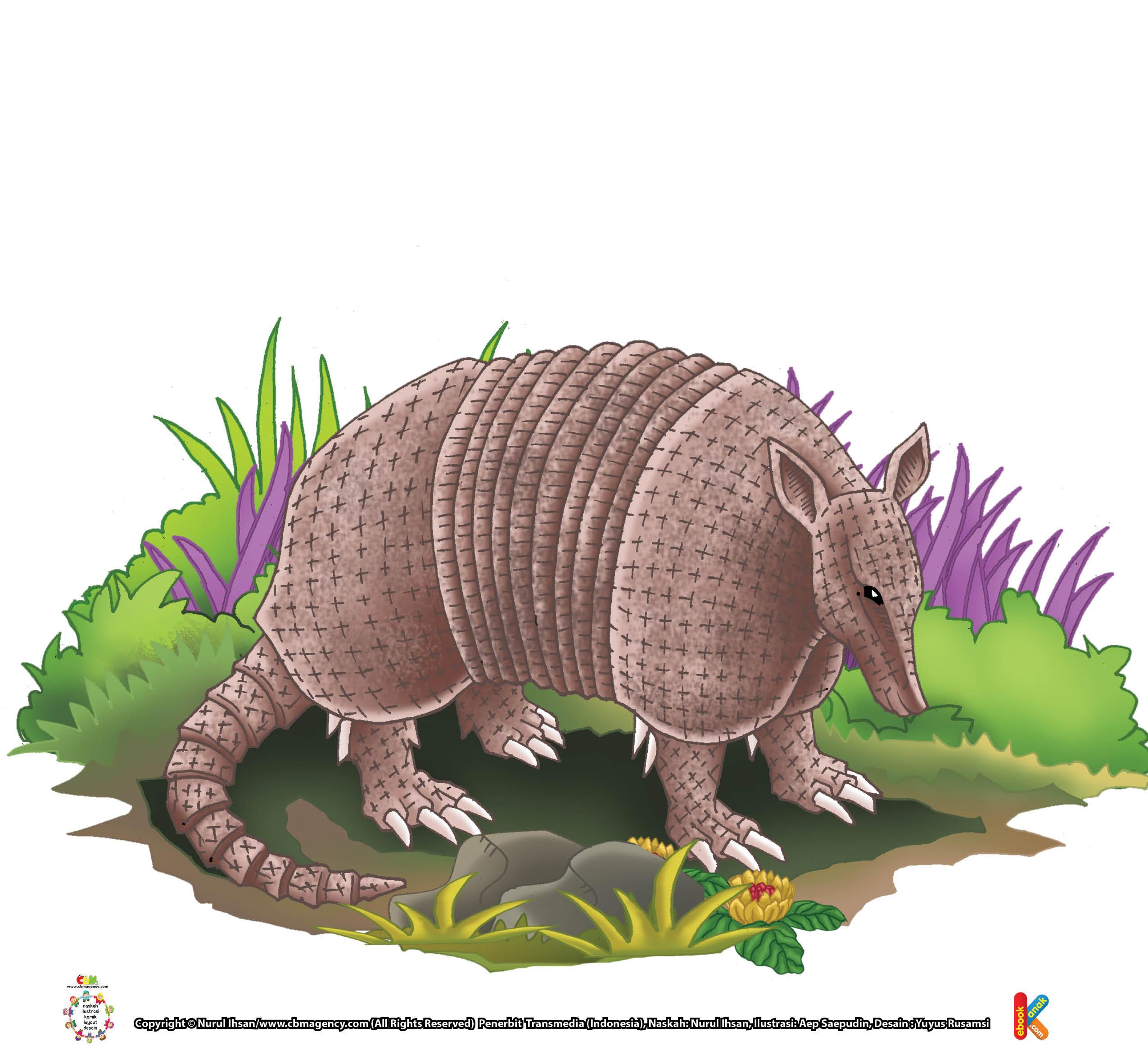 Armadilo adalah satu-satunya hewan mamalia bercangkang, selain trenggiling.