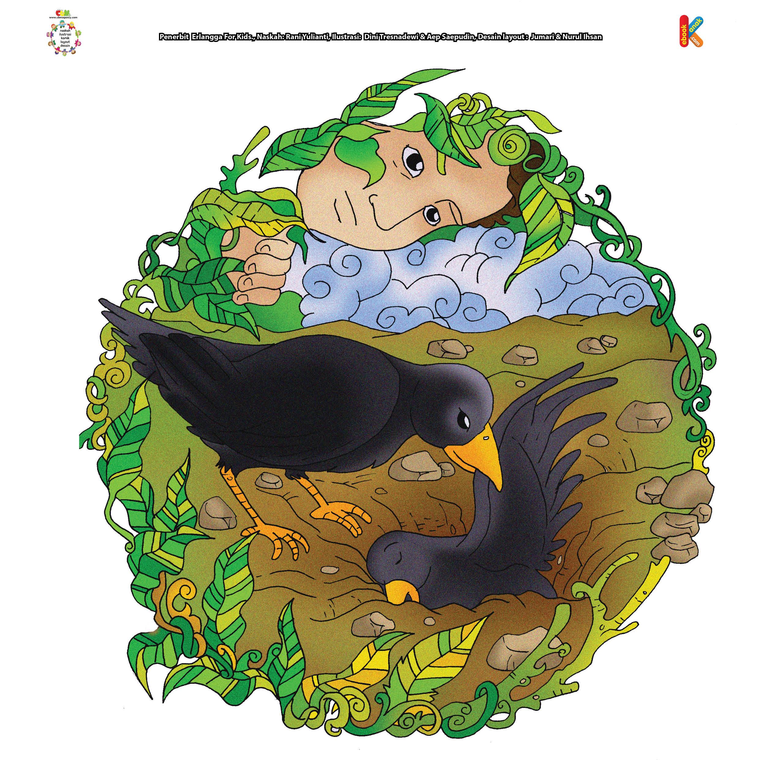 Kedua burung gagak berkelahi. Salah satu burung gagak ada yang mati.