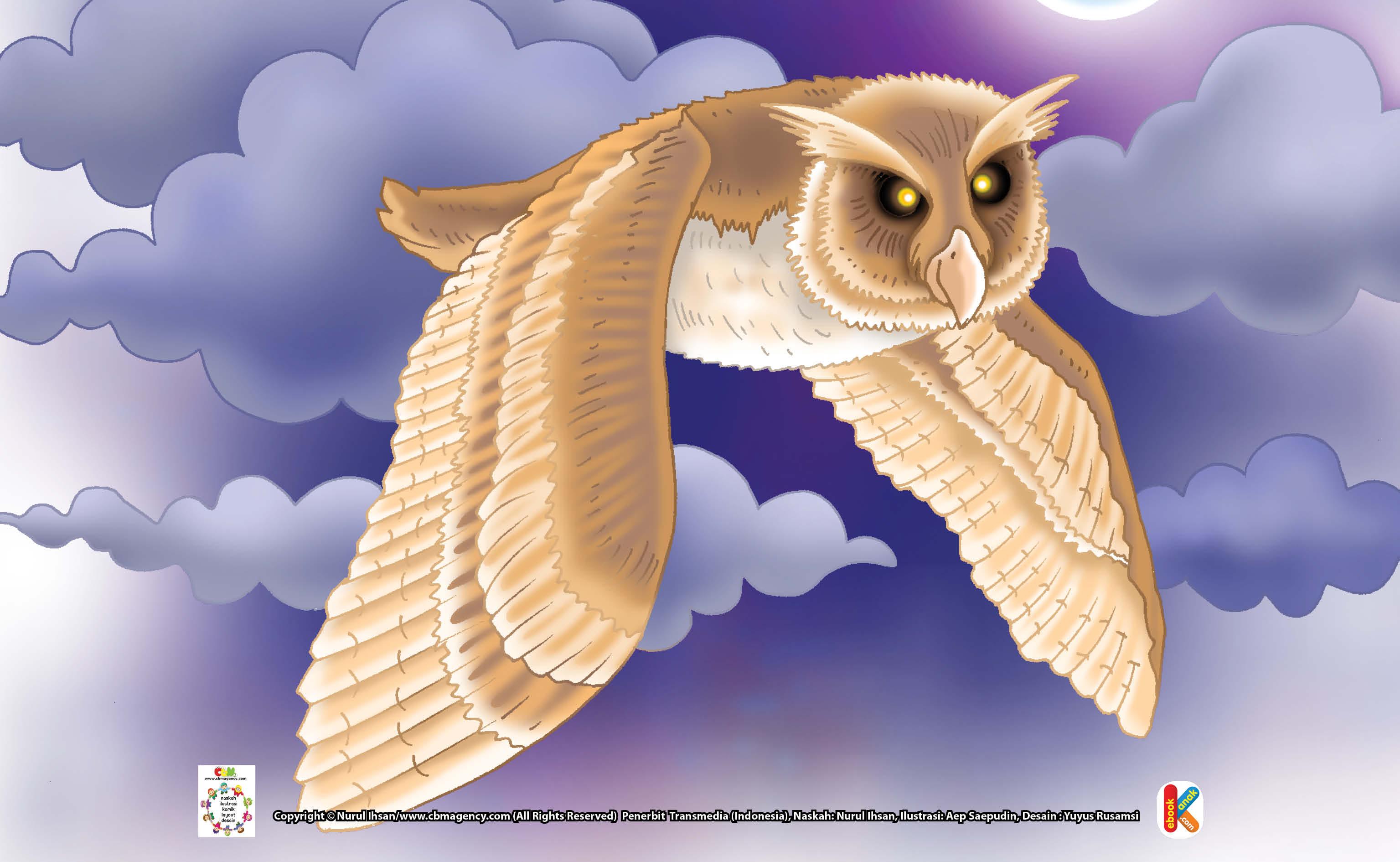 142 Gambar Ilustrasi Burung Hantu