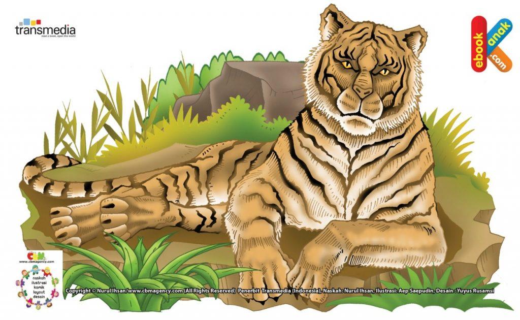 ilustrasi-harimau-kucing-buas-terbesar