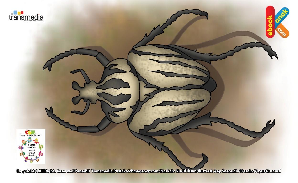 Goliath, Kumbang Terberat dan Serangga Terbesar