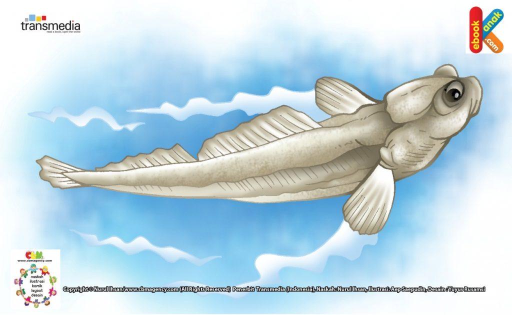 ilustrasi-ikan-glodok-ikan-yang-pandai-memanjat