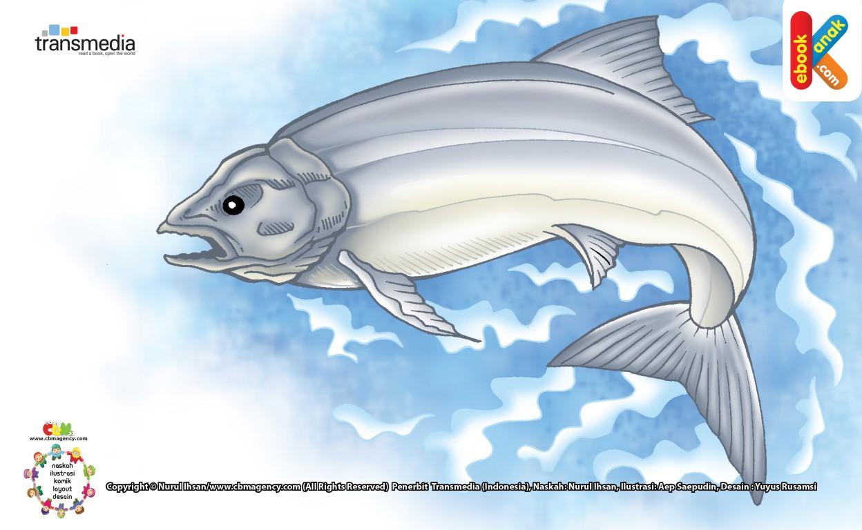 Salmon Ikan Penjelajah Di Laut Dan Sungai Ebook Anak