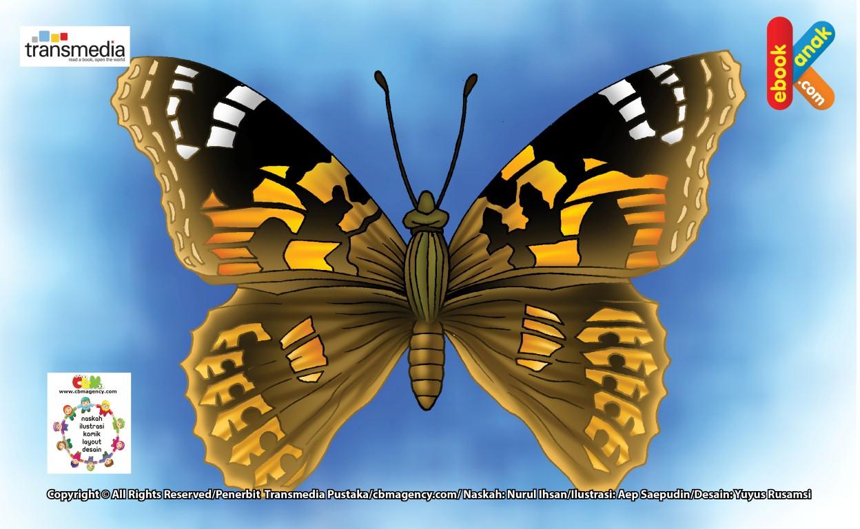 Kupu-kupu Putri, Kupu-kupu Penjelajah Terjauh