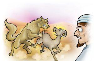Mukjizat Rasulullah Serigala Bisa Bicara