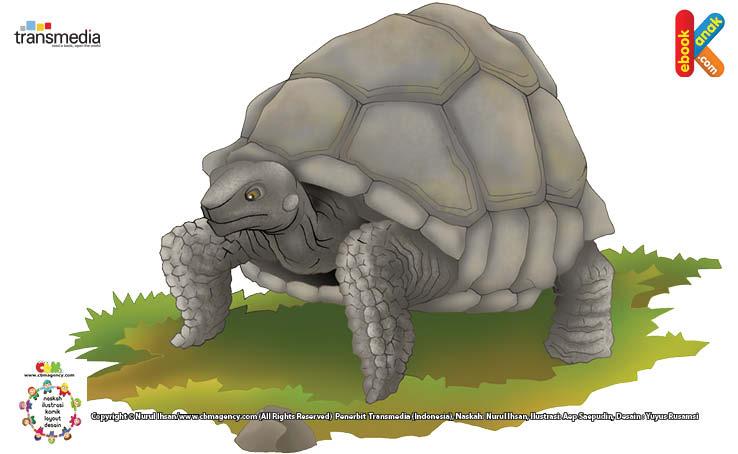 Kura-kura Galapagos merupakan jenis kura-kura raksasa yang hidup di kepulauan Galapagos, Ekuador.