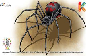 Racun laba-laba janda hitam sangat mematikan.