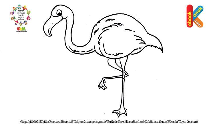 Mewarnai gambar flamingo, burung berkaki panjang.