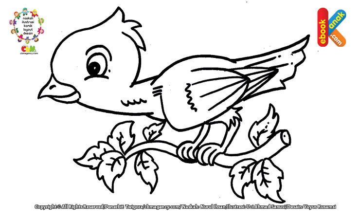 download gambar mewarnai burung pipit