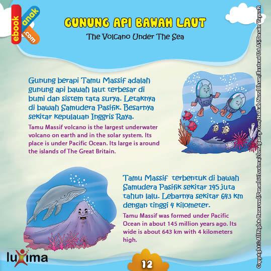Gunung berapi Tamu Massif adalah gunung api bawah laut terbesar di bumi dan sistem tata surya