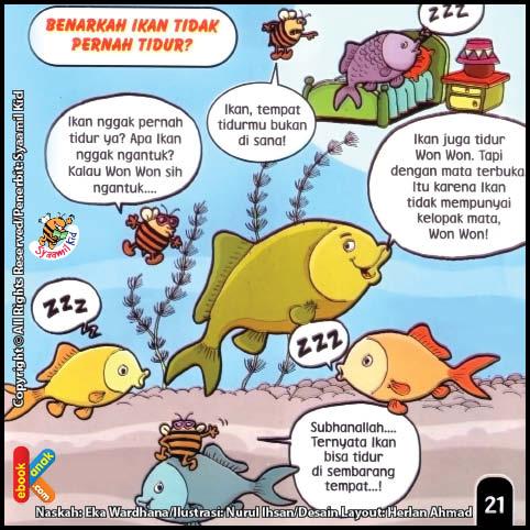 Apakah Ikan Di Dalam Air Suka Tidur?