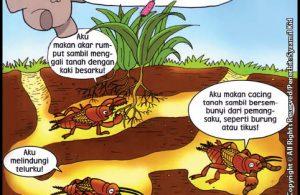 Orong Orong Apa Yang Kau Lakukan Dalam Tanah Ebook Anak