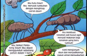 Mengapa Ada Serangga Merusak Tumbuhan?