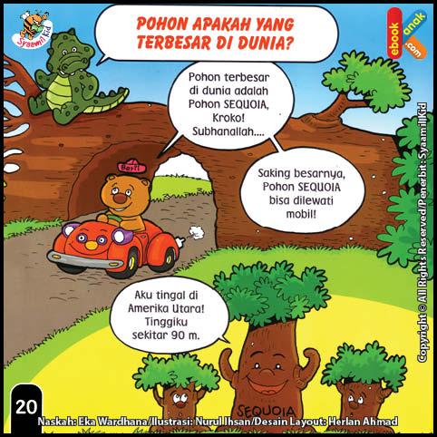 Pohon Apakah yang Terbesar di Dunia?