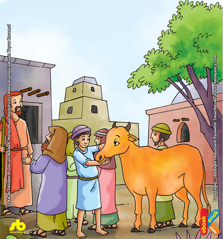 Sapi Betina Istimewa Pilihan Nabi Musa