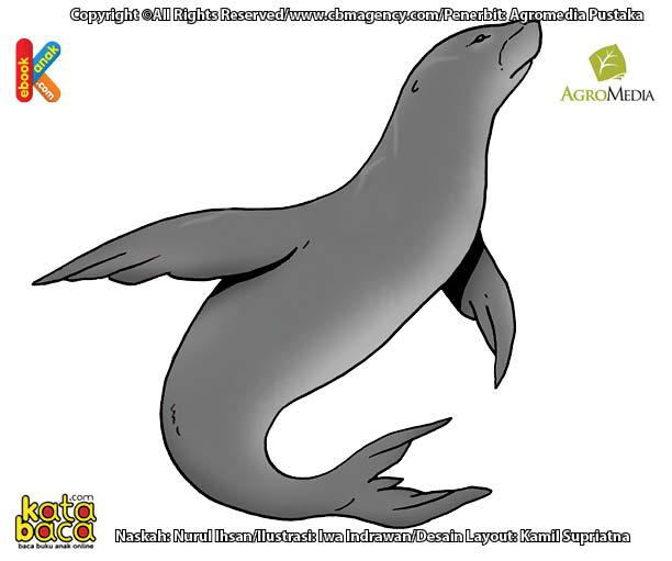 Anjing Laut Weddel Penyelam Paling Handal