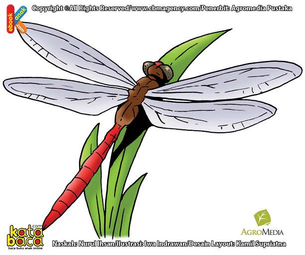 Apakah Nama Serangga Udara Terbang Tercepat di Dunia