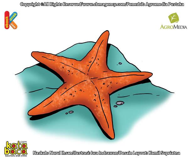 Bintang Laut Binatang Tanpa Kepala dan Otak