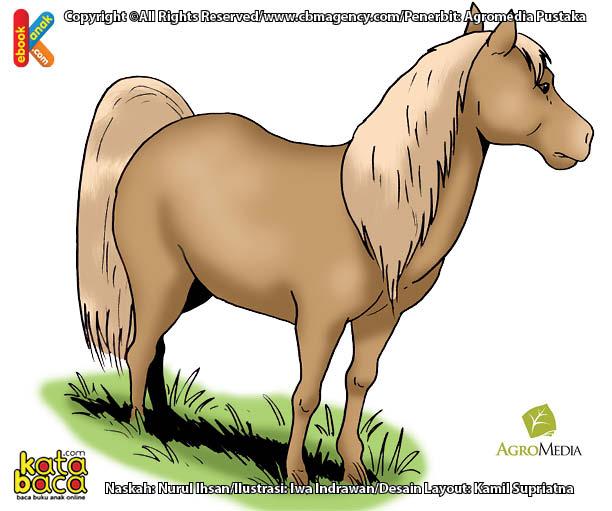 Inilah Kuda Terkecil di Dunia, Hanya 48 centimeter Tingginya
