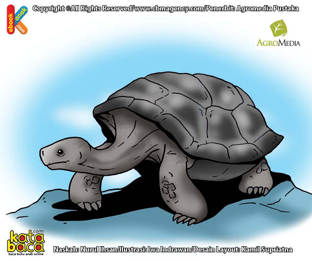 Inilah Reptil Berumur Terpanjang di Dunia Berusia Sampai 150 Tahun