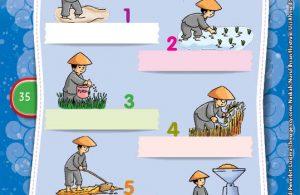 "Si Raja Nasi ""The Rice King"" (5)"
