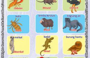 Kamus Visual Binatang Dua Bahasa Indonesia Inggris (7)
