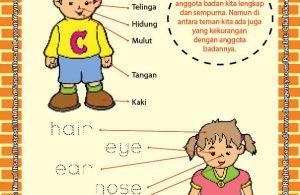 Worksheet Paud Tk Anggota Tubuhku Sempurna Ebook Anak