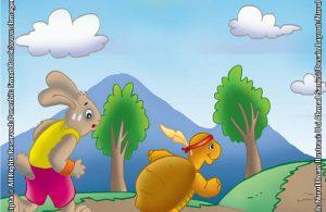 Kura-Kura yang Bisa Mengalahkan Kelinci dalam Lomba Lari