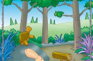 Semak Belukar yang Suka Mengeluh Karena Ingin Jadi Pohon Cemara
