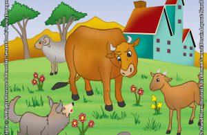 Senjata Lembu, Biri-Biri, dan Kambing yang Ditakuti Serigala