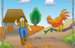 Serigala dan Ayam Jantan yang Sama-Sama Cerdik