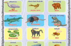 Kamus Visual Binatang Dua Bahasa Indonesia Inggris (1)