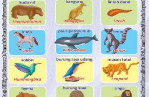 Kamus Visual Binatang Dua Bahasa Indonesia Inggris (6)